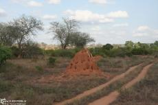 IMG 7648-Kenya, ant hill in Tsavo East